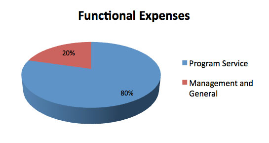 Financial Functional Expenses